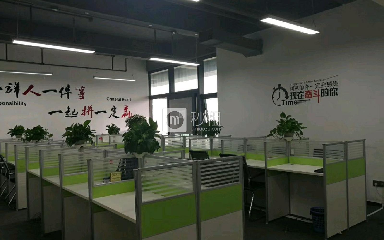 龙岗-坂田 天安云谷 246m²