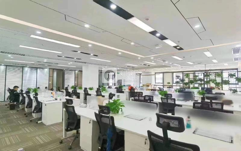 深圳湾科技生态园(一期)写字楼出租778平米精装办公室65元/m².月