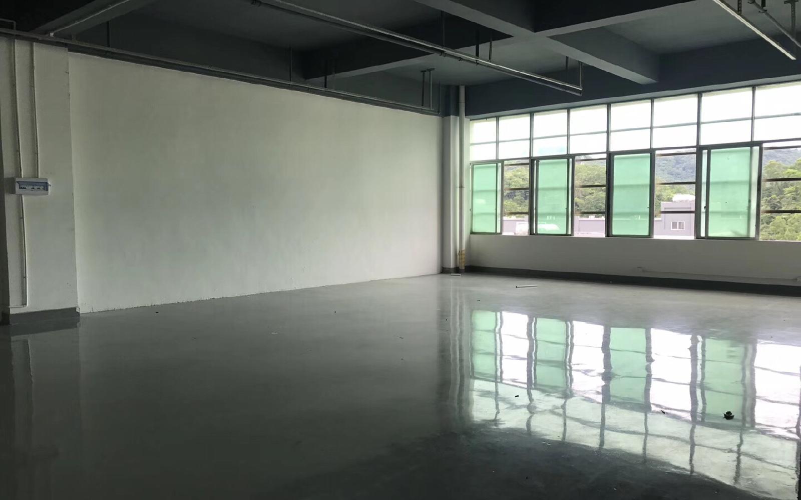 龙岗-坂田 龙景科技园 206m²