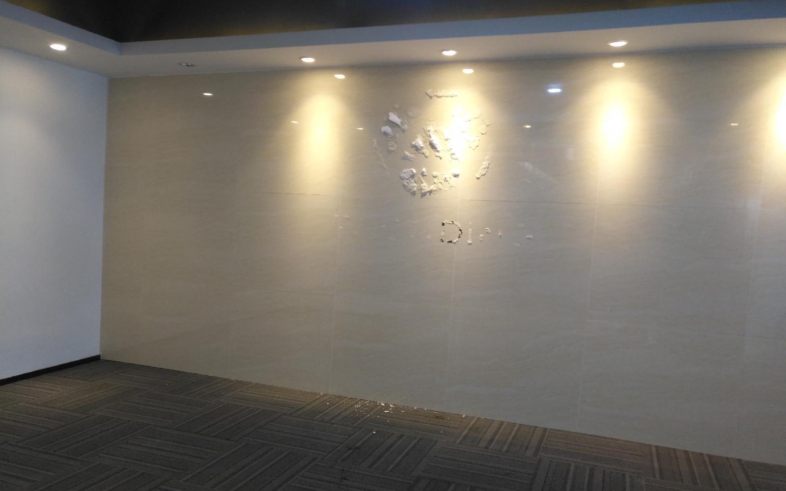 龙岗坂田【星河WORLD(一期)】376m²户型