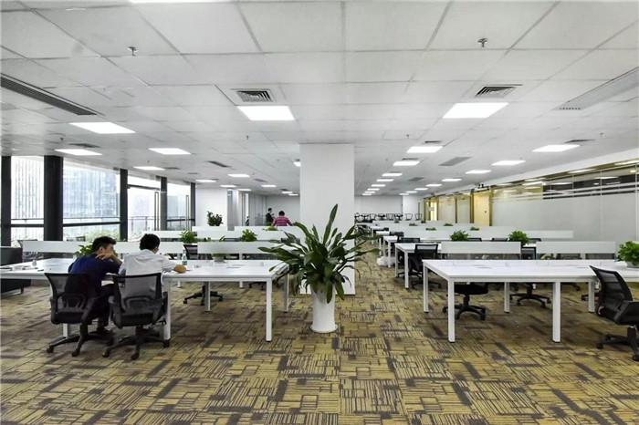 深圳湾科技生态园 538精装 高层正南向 电梯口 仅租88