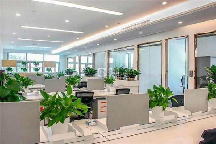 智慧广场 华侨城300平精装修 业主直租带家私拎包入驻